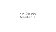 Trodat Replacement Pads