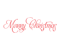 Create great holiday projects with a self-inking fancy calligraphy Merry Christmas holiday stamp. Choice of 11 ink colors & Free shipping on orders over $45!